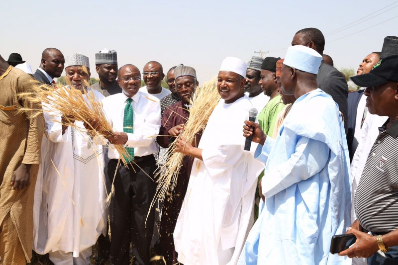 L-R: Former Governor of Kebbi State, Senator Adamu Aliero; CBN Governor Godwin Emefiele; Minister of Agriculture, Chief Audu Ogbe; and Kebbi State Governor, Alhaji Atiku Bagudu, during the Assessment Tour of ANCHOR Borrowers Programmes in Kebbi State, on April 23, 2016.
