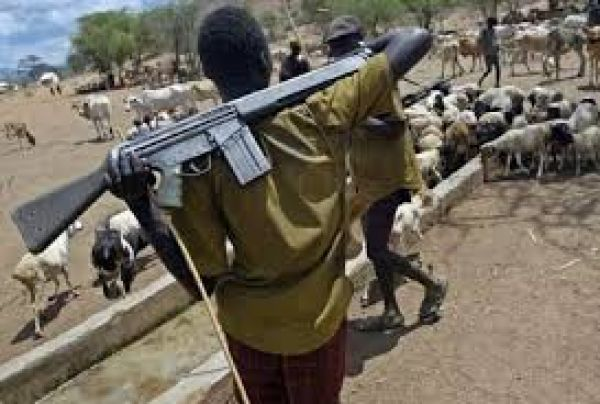 Why we attack Benue people — Herdsmen