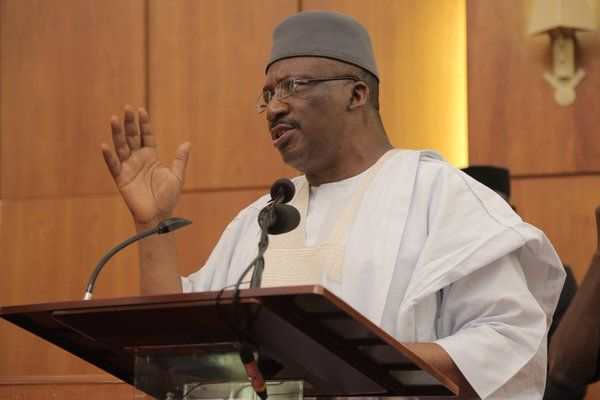 Delay in visa issuance to Nigerians embarrassing — Minister