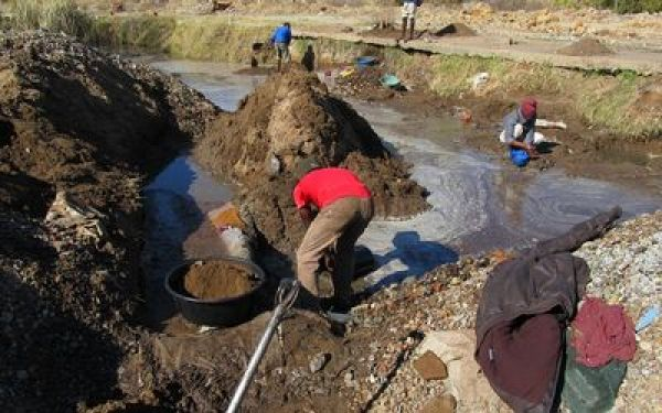 •Illegal miners at work