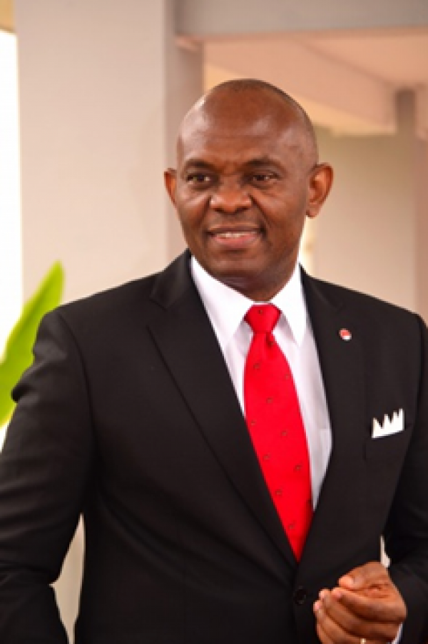 Africa promises good investment opportunity, Elumelu tells international businessmen