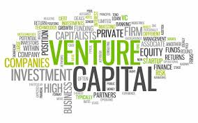 Scramble for African startups by venture capitalists: Yay or Nay? asks Damilola Faustino